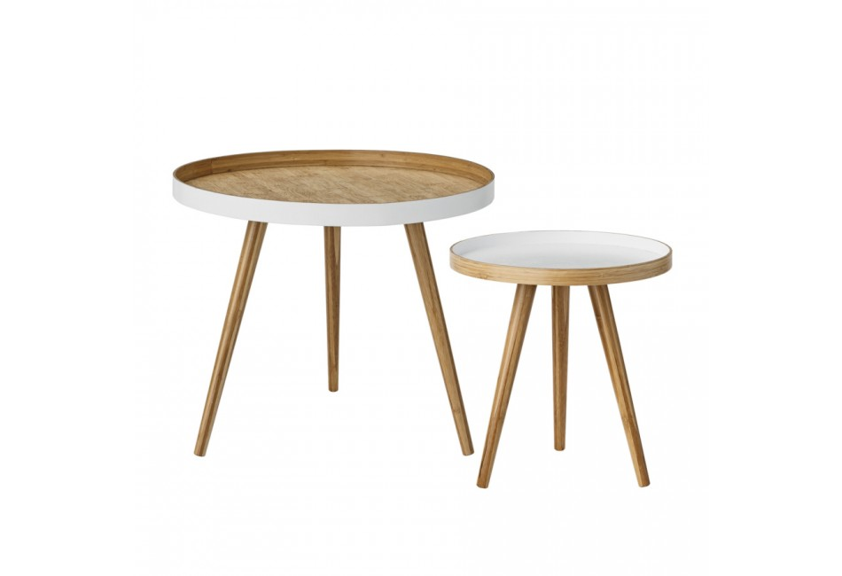 COFFEE TABLE SET DE 2